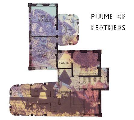 PlumeofFeathersQnA3